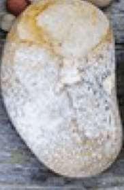 Piedra 8