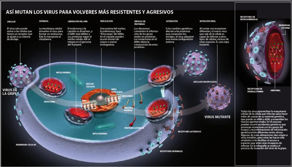 Infografía de Ignacio Bello