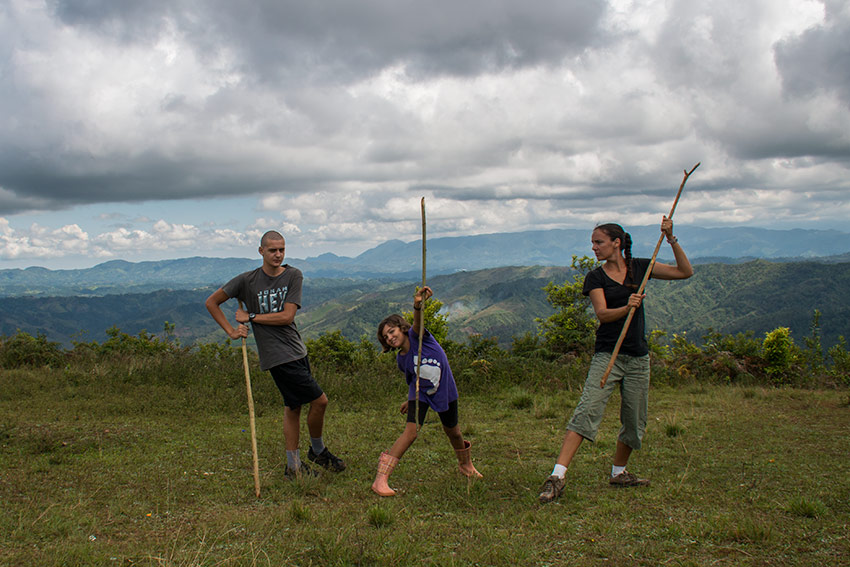 Palos en el cerro El Mogote
